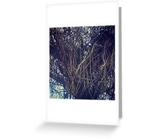 Heart of Vines Greeting Card