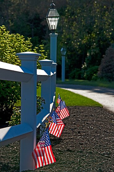 Fourth Of July Fence by phil decocco