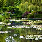 Monet,s water lilies  by thvisions