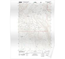 USGS Topo Map Washington State WA Reecer Canyon 20110601 TM Poster