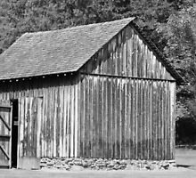 Old Barn  by Stacy Brooks Photography