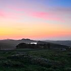 Sunrises over Hadrian's Wall and the sheep on Winshields Crag by Joan Thirlaway