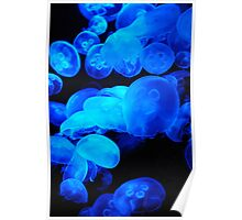 Neon Glow Jelly Fish Poster