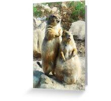 Prairie Dog Formal Portraits Greeting Card