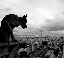 View from Notre-Dame - Paris by Federica Gentile