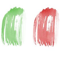 Brush Flag of Mexico by T J B