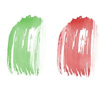 Brush Flag of Mexico Photographic Print