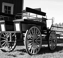 Old Carriage - Black and White by mricci