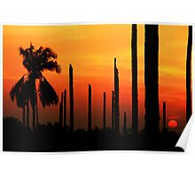 200808011921 Sunsets Poster