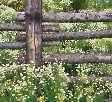 A Summer Meadow by leapdaybride