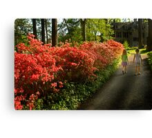 Out of the Azalea Woods Canvas Print