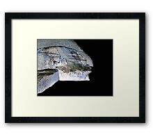 Time travelers Framed Print