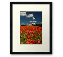 Summer Poppy Field 2 Framed Print