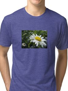 Close Up Common White Daisy With Garden  Tri-blend T-Shirt