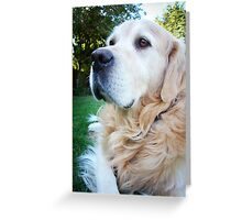 Golden Pride Greeting Card