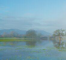 Floods on the River Severn 2 by Sue Dudley