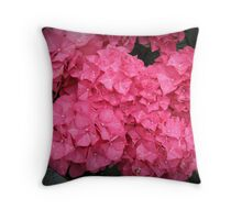 Crowns of Glory - Beautiful Hydrangea Blossoms Throw Pillow