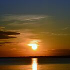 Shades of the Sun by BeachBumPics