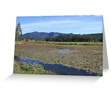 to the south at lake clarrie hall ... Greeting Card