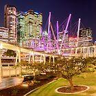 Kurilpa Bridge, Brisbane by liming tieu