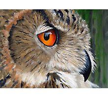 Eagle Owl Photographic Print