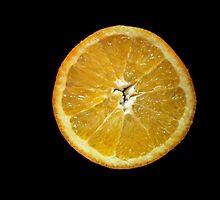 Garnish It with Orange by ArtBee