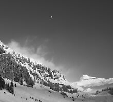 Alps in Winter by Surfcat