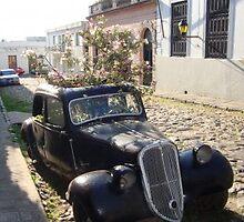 Auto maceta by Billy Azulay