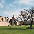 Glastonbury Abbey cloisters and nave, Somerset.  by Grace Johnson
