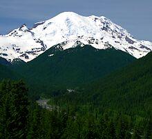 Mt Rainier by Brian Harig