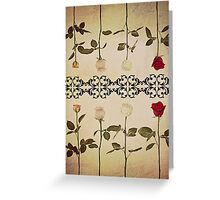 Coloured Roses. Greeting Card