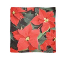 Beautiful Red Poinsettia Christmas Flowers Scarf