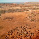 Desert Plain by V1mage