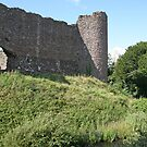 White Castle's overgrown moat, Wales by Grace Johnson