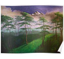 Landscape, mist Poster