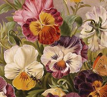 iPHONE Case-Pansies by Pamela Phelps