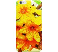 BEAUTIFUL WATERCOLOR ELEGANT BEAUTIFUL FLOWERS BREEZY iPhone Case/Skin