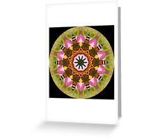 Butterfly Kaleidoscope 001 Greeting Card