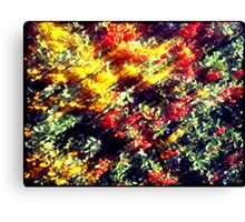 Pieces of Autumn #3 Canvas Print