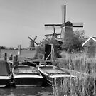 Windmills of Amsterdam by Ali Brown