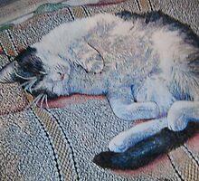 Lazy Caturday by Diana Cardosi-Bussone