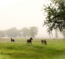 Cemetery Horses by James Banks