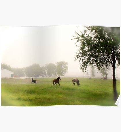 Cemetery Horses Poster