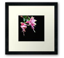 Kathie McCurdy Pink Fuschia Black Night Sky Framed Print