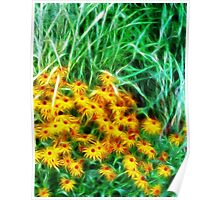 Kathie McCurdy Black Eyed Susans Abstract Flowers Poster
