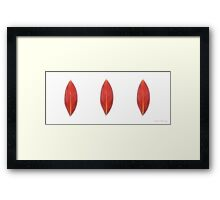 Kathie McCurdy Pressed Red Canna Leaves Framed Print