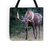 Don't Goose the Moose Tote Bag