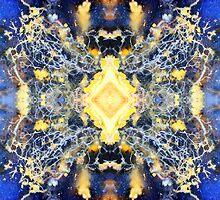 What Tangled Web (Plume Agate) by Stephanie Bateman-Graham