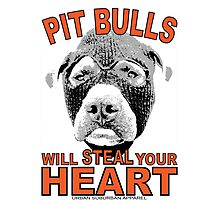 PIT BULLS WILL STEAL YOUR HEART Photographic Print