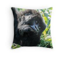 Mountain Gorilla, Volcanoes National Park, Rwanda, Africa. Throw Pillow